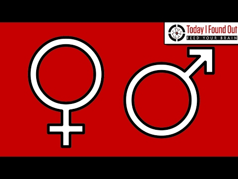 The Origin of the Male and Female Symbols