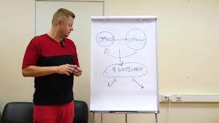 Стресс  Как избавиться от стресса  Как побороть стресс (Фрагмент семинара)