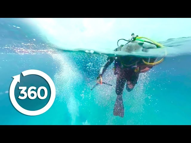 MythBusters: Shark Shipwreck (360 Video)