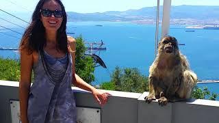 Cheeky Monkey of Gibraltar by Sailing JAEKA, week 51