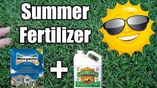 Best Summer Fertilizer for Lawns