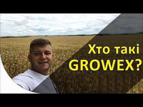Кто такие GROWEX?