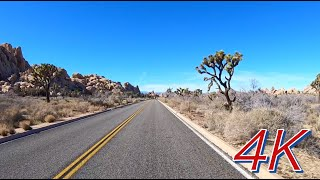 4K Scenic Drive in Joshua Tree National Park - Relaxing Drive