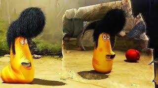LARVA - NEW HAIR CUT | Cartoon Movie | Cartoons For Children | Larva Cartoon | LARVA Official