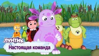 Настоящая команда 💥 Лунтик 💥 Сборник мультфильмов 2019