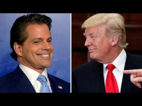 Scaramucci apologizes for comments about Donald Trump