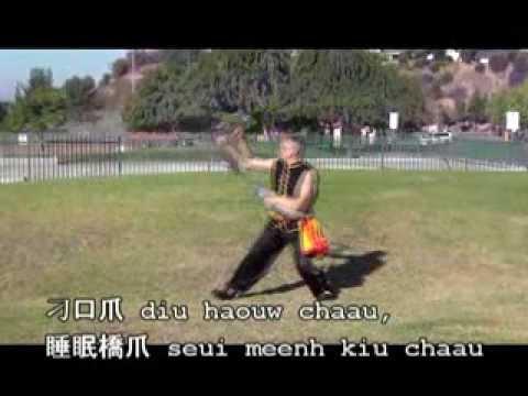 Siu Tong Long Jaang Chaau