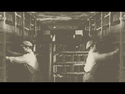 """Общество Мемориал: Презентация проекта """"Личное дело каждого"""". Доступ к архивной информации"""