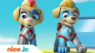 The Mighty Twins In Action 🐶🐶 PAW Patrol | Nick Jr.