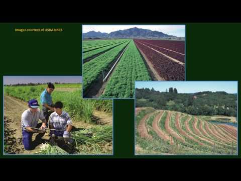 Michael Constantinides - USDA/NRCS