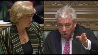 """Speaker John Bercow FURIOUS in discussion with Andrea Leadsom: """"SIT DOWN"""" - """"Raise the level!"""""""