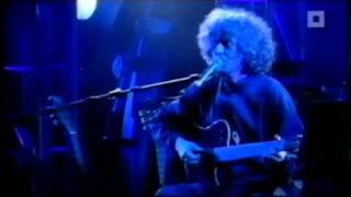 Angelo Branduardi - Il Dono Del Cervo (Live @Antwerpen)