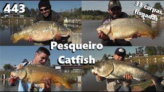 Frio de 5 graus e muitos peixes no Pesqueiro Catfish - Fishingtur na Tv 443