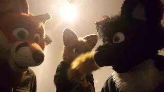 Fursuit Friday Series Episode 6