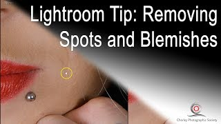 Removing spots and blemishes in Lightroom