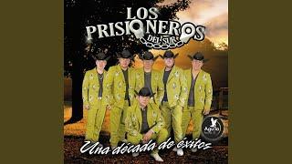 """Video thumbnail of """"LOS PRISIONEROS DEL SUR - Como Te Va Mi Amor"""""""