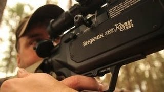 Deer and Predator Hunting With The Benjamin Rogue Air Rifle - The Management Advantage #53