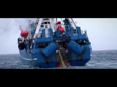 Южный океан. Что мы о нём знаем?