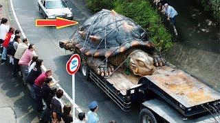 ПОЧЕМУ ОТ НАС СКРЫВАЮТ ГИГАНТСКИХ ЖИВОТНЫХ? Самые большие животные на Земле