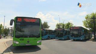 Firea: Primul lot de autobuze hibrid Mercedes Citaro a intrat pe traseu