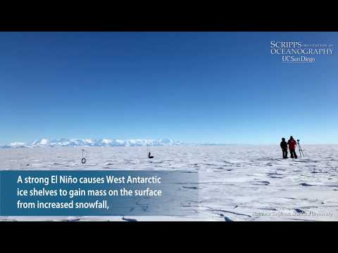 Strong El Niño Events Cause Changes in Antarctic Ice Shelves