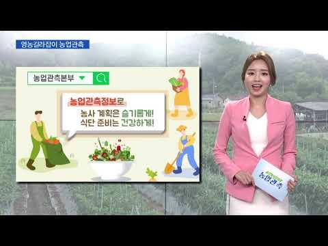 [영농길라잡이 농업관측] 엽근채소, 양념채소 10월 관측 이미지