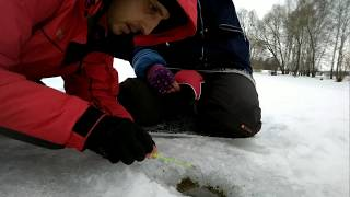 Пруд рыбалка в пензе на чистых прудах