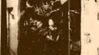 Irma Victoria - Animal Culture