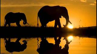 Musica Africana - Oxam