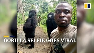 Why a park ranger's selfie with two gorillas went viral
