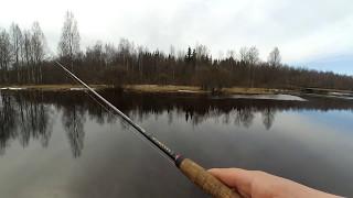 Рыбалка на маленьких речках ленинградской области