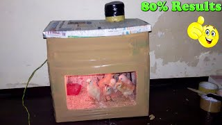Homemade Incubator For Chicken Eggs    Hatching Chicks at Home
