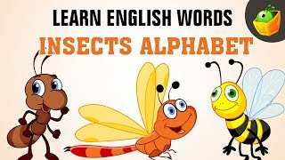 Insects | Learn Spelling | For Kindergarten and Toddlers in MagicBox
