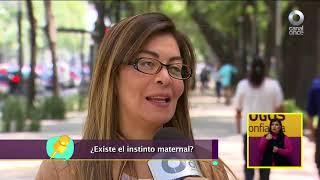Diálogos en confianza (Sociedad) - Mitos del instinto maternal