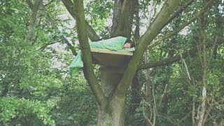 I Spent the Night in a Tree & It Was a Huge Mistake (Sleep in a Tree Challenge)