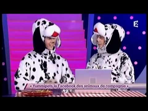 Yummipets le Facebook des animaux de compagnie