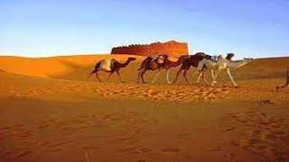 مازيكا محمد حسن - عادل عبد المجيد - خالد المزواوى - المراسيل ( الواحة 2 ) تحميل MP3
