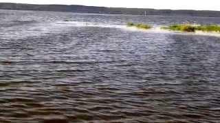 Галичское озеро костромской области рыбалка