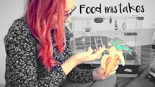 Food mistakes with birds