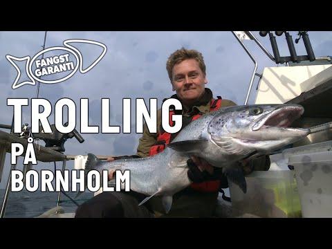 Trollingfiskeri efter laks på Bornholm med Fangstgaranti