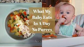 What My 8 Month Old Eats In A Day| Baby Led Weaning