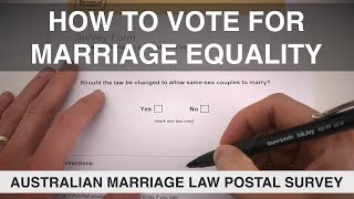 How to Vote for Marriage Equality