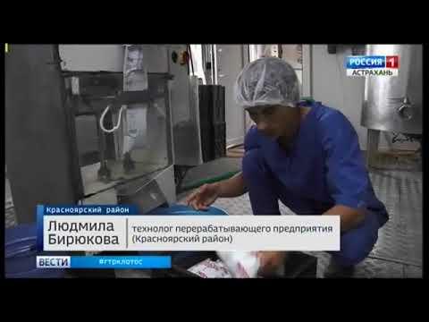О фальсифицированной молочной продукции в социальных учреждениях Астраханской области
