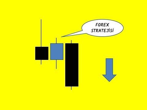 Ergebnis im euronetz