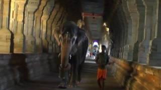 Rameshwaram Temple Corridor, Tamilnadu