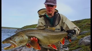 CAN'T BELIEVE IT (HUGE) - The Arctic Odyssey Episode 14 (Hommes Du Nord 2017) Elk - Thelon Rivers