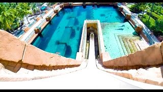 Leap of Faith : Water Slide - Atlantis (Paradise Island, Bahamas)