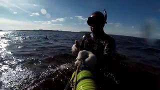 подводная охота в десногорске одном