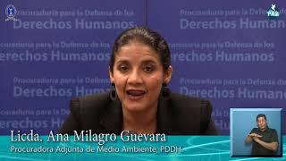 PDDH impulsa atención de casos de protección al Medio Ambiente y recursos del país