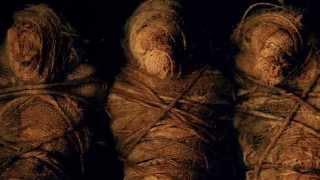 Lamb of God – Erase This (Official Lyric Video) Thumbnail